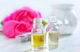 gerüche entfernen muffiger geruch schimmelgeruch entfernen cleanipedia
