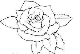 imagenes para colorear rosas rosas para dibujar a lápiz flores para colorear