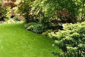 Average Cost Of Landscaping A Backyard 2017 Lawn Mowing Prices Cutting Maintenance Service Costs