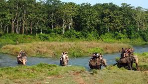 wildlife tours images Jungle safari wildlife tours master himalaya jpg