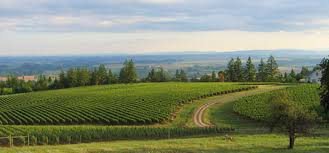 Valley Oregon Willamette Valley Real Estate Realty Net Llc Oregon Listing