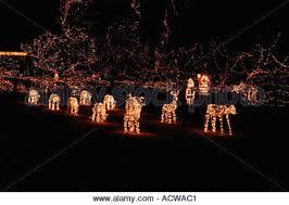 christmas tree santa claus reindeer sleigh present christmas stock