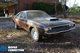 gator dodge used cars finders keepers steve s 1970 challenger t a gator top