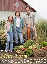 399 best homesteading images on pinterest gardening