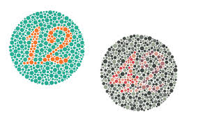 ishihara color vision test book u2013 24 plate s4optik