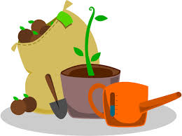 Garden Supplies Growing And Gardening Program Withee Public Library