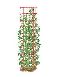bean trellis pole bean trellis green bean trellis gardeners com