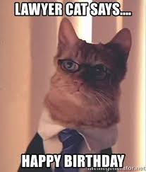 Lawyer Cat Meme - lawyer cat says happy birthday lawyer cat meme generator