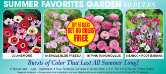 Ready For Spring by What You Need To Get Your Home U0026 Garden Ready For Spring Pch Blog
