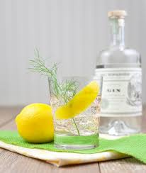 Summer Cocktail Party Recipes - 69 best gin cocktails images on pinterest cocktails drinks and gin