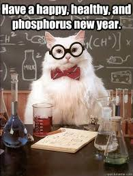 Happy New Year Funny Meme - have a happy healthy cat meme cat planet cat planet
