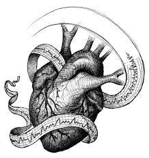 fernando creative design medical heart ekg illustration sketch