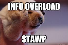 Overload Meme - info overload stawp headache puppy quickmeme