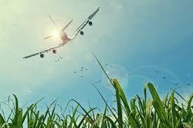 Yapta Com Flights by How To Track Cheap Flights Air Ambulance Card
