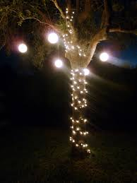 palm christmas tree lowes christmas lights decoration