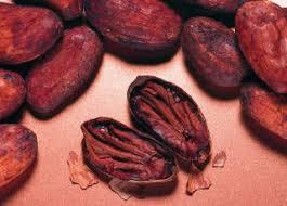 cours de cuisine londres cours du cacao de londres dynamique haussière ig fr