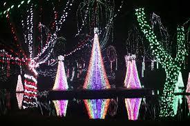 columbus zoo christmas lights proposal at the columbus zoo and aquarium wildlights james erin