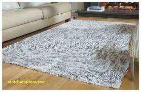 10 X 12 Area Rugs 10 X 12 Area Rugs Rug Goldenbridges In Plan 0 Divinodessert
