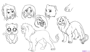 how to draw lions step by step safari animals animals free