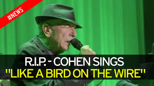 why are so many celebrities dying in 2016 leonard cohen joins
