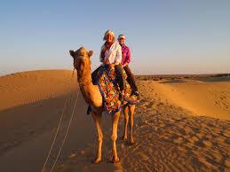 thar desert roam the thar desert by riding on the hump of a camel u2013 india