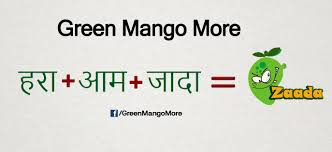 what is the meaning of about us what is the meaning of green mango more explained in