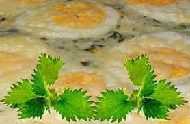 cuisiner les orties gratin d orties recettes
