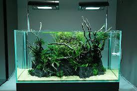 japan tour 2013 ada gallery aquariums aquarium decorations