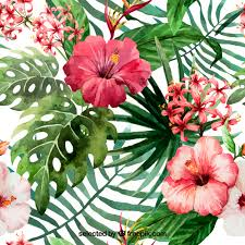free flowers painted tropical flowers vector free