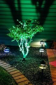 Intellibrite Landscape Lights Pentair Landscape Lights Flyingangels Club
