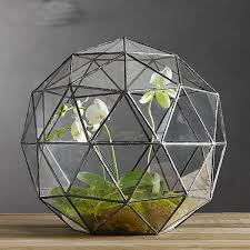 large geometric metal and glass terrarium for succulents and