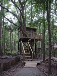 Georgia forest images Tree houses at hostel forest in brunswick georgia jpg