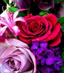 Rose Bouquet Fuchsia 9in 31 Best Happy Birthday Images On Pinterest Flower Arrangements