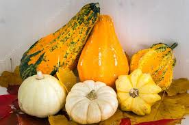 small pumpkins small pumpkins on a table stock photo alpegor6 125948090