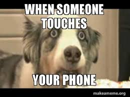 Dog Phone Meme - when someone touches your phone funny dog make a meme