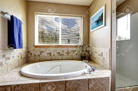 whirlpool bath tub with tile trim decorated with green plant