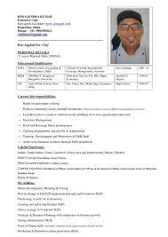 Pastry Chef Resume Download Chef Resume Haadyaooverbayresort Com