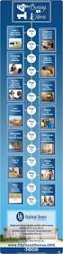 New Home Construction Steps 14 Steps To Owning A New Construction Home