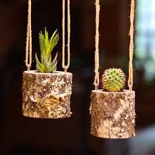 Hanging Plant Hanging Planter Indoors Rustic Hanging Succulent Planter Log