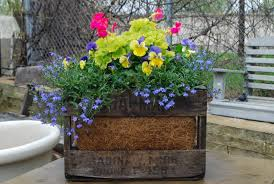 spring container planting dirt simple
