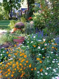Cottage Garden Ideas Pinterest by Shade Cottage Gardens Google Search Cottage Gardens