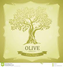 olive tree olive oil vector olive tree for labels pack stock