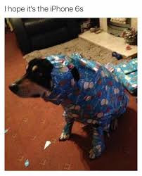 Wrapping Presents Meme - 8 gift wrapping fails that will make you cringe lifestyletopia