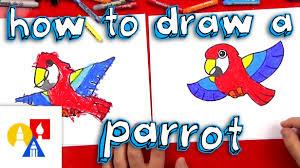 how to draw a cartoon parrot youtube