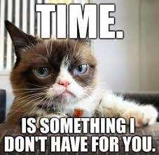 Angry Meme Cat - grumpy cat me memes grumpy cat pinterest grumpy cat