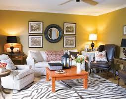 Leopard Print Rug Living Room Zebra Print Rug Image Is Loading Com Nuloom Brown Hand Tufted