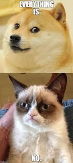 Shibe Meme Maker - image tagged in grumpy cat doge imgflip
