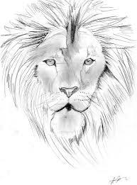 drawn hand lion pencil color drawn hand lion