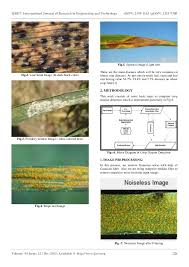 Plant Disease Journal - extraction of texture features by using gabor filter in wheat crop di u2026