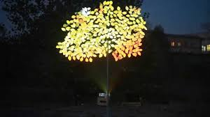 hologram tree
